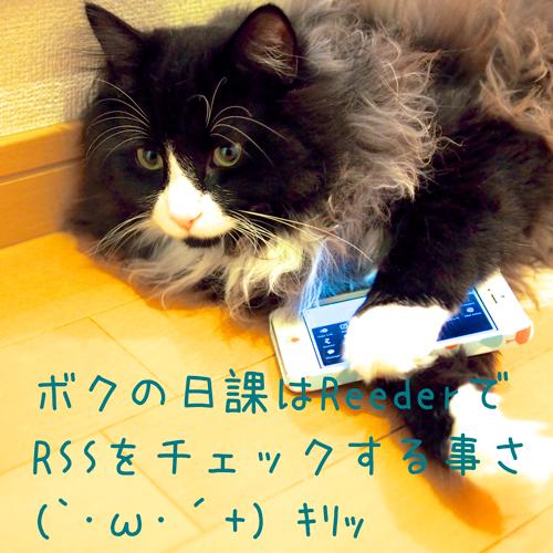 ガジェット猫とiPhone 5