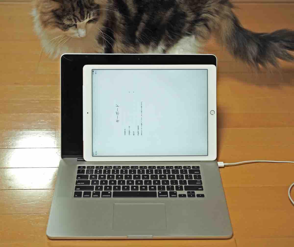 MacBook Pro 15インチとiPad Proの比較