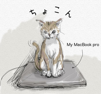 猫とMy MacBook Pro
