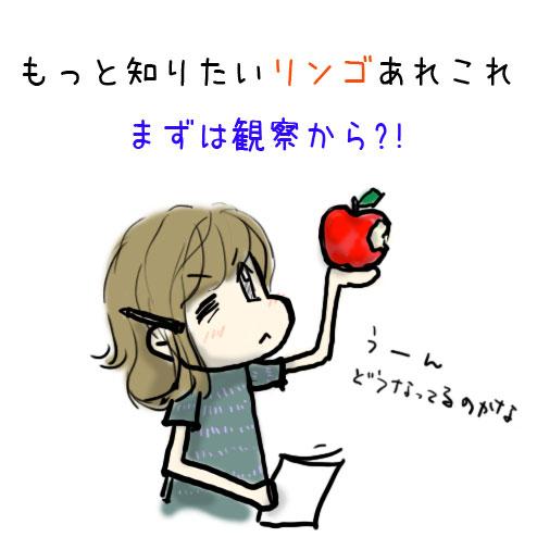 もっと知りたいリンゴあれこれのタイトルイメージ