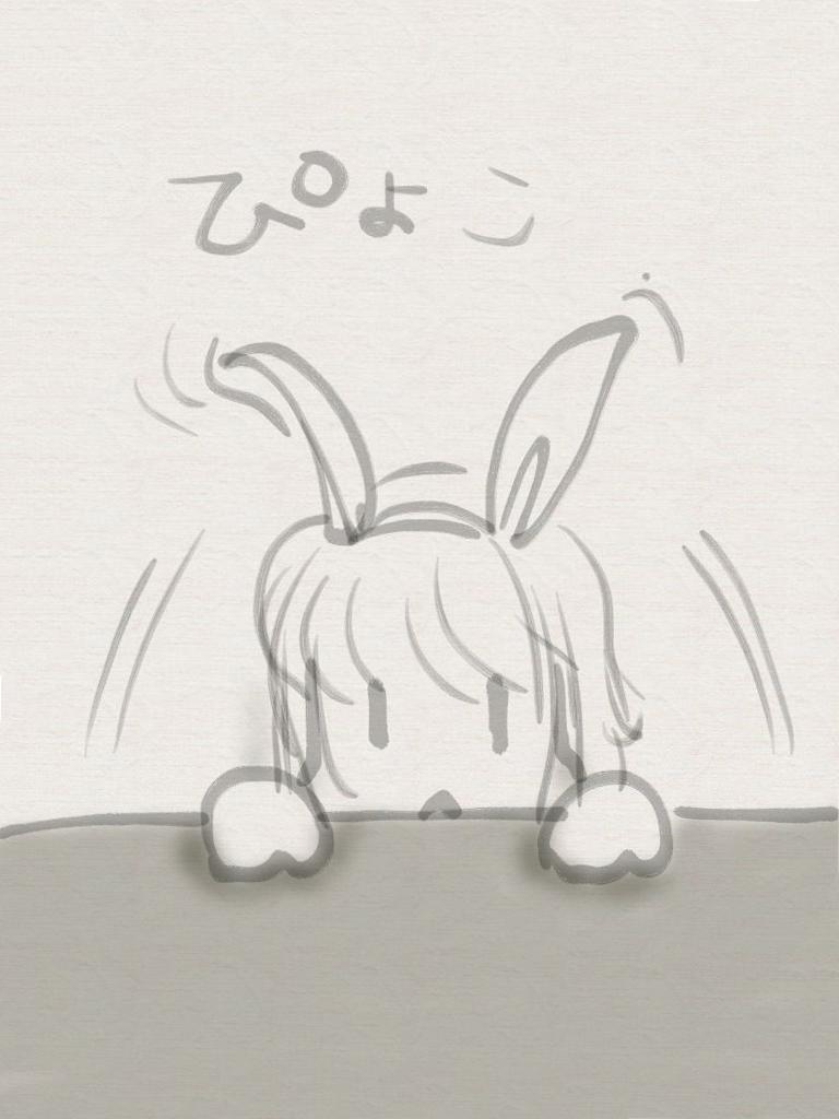 うさぎ(iPad用)