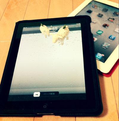 母親のiPadとユコびんのiPad2